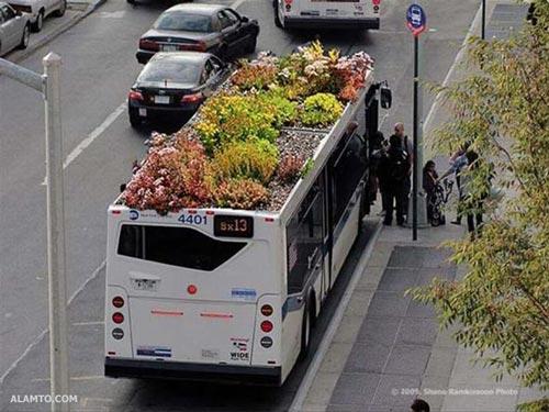 اتوبوس یا باغچه !؟ عکس خنده دار