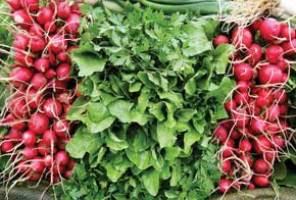 سبزیجات هم گاهی مضر میشوند